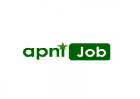 Latest and Online Jobs in Pakistan 2020 - Apni Job