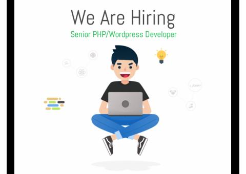 Senoir PHP/Wordpress Developer